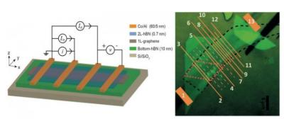 Graphene-BN device with high spin transport efficiency