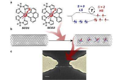Spin-state-dependent electrical conductivity in single-walled carbon nanotubes encapsulating spin-crossover molecules image