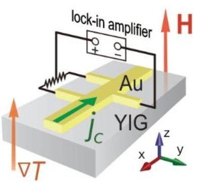 Magnetic-gold experiment scheme (Tohoku, 2016)