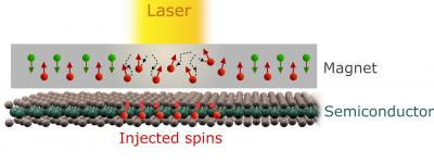 Ultra-short laser pulses on cobalt - spin polarization photo